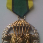 Vyznamenání výroba verianty II.stupeň  Věneček ze stříbra Ag puncované, netopýr  zlacený pravým zlatem