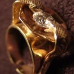 Prsten Kobry masivní