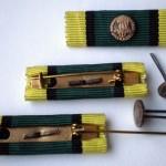Miniaturka medaile vyznamenání Para Vimperk