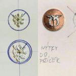 Letecky-odznak-Prim-1a2navrh